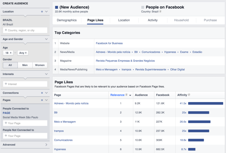 Audience Insights - Page Likes