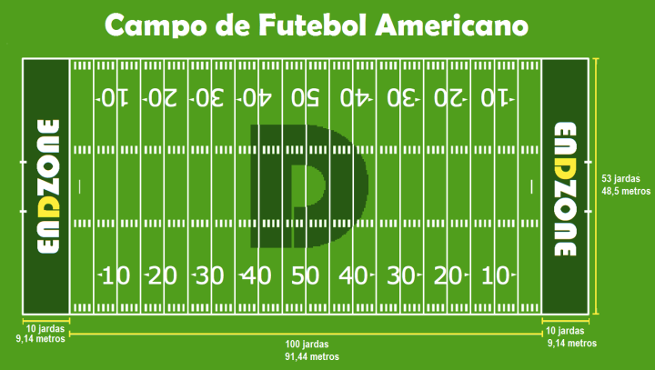 diarionflcampofutebolamericano.png